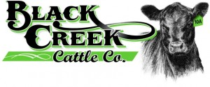 Black_Creek_Cattle_x240